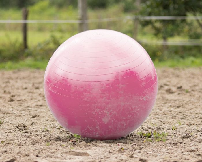 QHP Paardenvoetbal roze